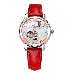 帝达时(Tierxda)手表女全自动机械女表 镂空飞轮表韩版时尚女士手表6063L-1P